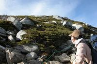 花崗岩の間に群生するハイマツ。その秘密は、気候変動に隠されていた。