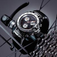 よーくみてください、ディスクとキャリパーみたいでしょ。モーターサイクルっていうより自転車っぽいけど……。