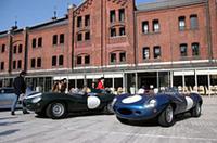 1955年から57年にかけてルマンを3連覇したDタイプ。左のブリティッシュ・レーシング・グリーンは55年式、右のメタリックブルーは57年式。エンジンは3.5リッターのXKユニット。
