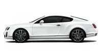 強大なパワー(と車重?)に対応して、カーボンセラミックブレーキが標準で装備される。