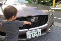 2歳の息子が早速「ライオンがいる!」とエンブレムに興味を示した。「これはジャガーだよ」と教えてあげる。