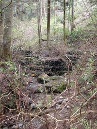 小川に設けられた「鋼製自在枠ダム」。地盤が柔らかいところに作っても壊れないのが特徴。さらに水をきれいにする、下流にちゃんと水を流すなどの利点があるという。