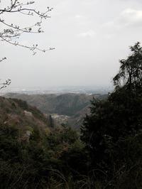 東京の西、八王子市にある高尾山からのぞむ景色。