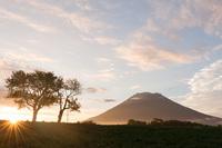 羊蹄山、夕景。