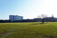 東京・武蔵野市に位置する武蔵野中央公園は、中島飛行機武蔵製作所の跡地を利用したもの。富士重工業の前身となった中島飛行機の創立は1917年なので、来年はその100周年にあたる。