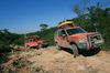 自然相手の大冒険「G4チャレンジ」を記念して「ランドローバー・ディスカバリー3」に特別限定車