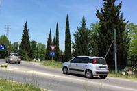 一番多かったのは、「フィアット・パンダ」。昨今イタリアでは大型SUVを手放して、立派になったパンダに乗り換える人が少なくない。先方にいるのはセアトのワゴン「アルテア」。