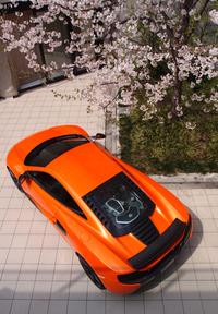 新型スポーツカー「マクラーレン650S」日本上陸の画像