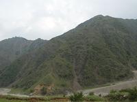 松木村跡をはじめとする足尾一帯は、草木がちゃんと育たないほど酸性の土壌と化していた。