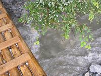 橋が水に沈めば帰り道が断たれる。このまま引き返すか、それとも先に進むか?