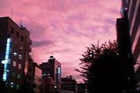 ある日、会社の空が赤く染まった。