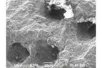 「表面再生ゴム」の顕微鏡画像。