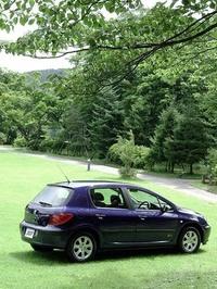 307もCピラーは太いが、ゴルフの重厚感はない。軽快なウィンドウグラフィックに注意。