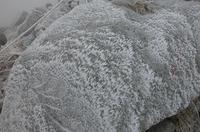 岩といい地面といい、いたるところ雪だらけ。その模様が吹雪いていることを容易に想像させる。