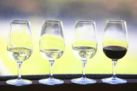 テイスティングに供されたワイン。白ワインは左からグレイス茅ヶ岳 白、グレイス グリド甲州、甲州 鳥居平畑プライベートリザーブで、すべて甲州種100%でヴィンテージは2014年。赤ワインは、グレイス メルロ2012。