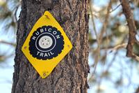 「ルビコン トレイル」路肩の樹木に貼られたマーキング。