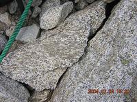 断層面付近の岩と推測できる。岩のなかの黒い模様の部分に注目。断層のために擦られて、模様が変形している。