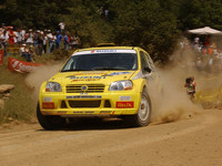 WRCのサブカテゴリー「JWRC」で戦う「スズキ・イグニス Super 1600」。ドライバーはダニエル・カールソン。(写真=スズキ)