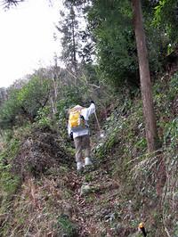 歩き遍路が挑戦しなければならないのは山登りや峠越え。「遍路転がし」と昔から呼ばれる、いくつかの難所を越えなくてはならない。これは有名な焼山寺への道。歩き始めて3日目ぐらいに挑まなくてはならないここでは、およそ6時間かけて500〜700メートル級の三つの峰を上り下りするために、ここで足を痛めてあきらめる人も少なくない。