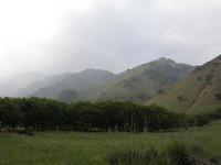 松木村跡にたどり着いた。といっても、ひとの営みが感じられるものはほとんどない。