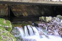 ワイオミングの間欠泉。米国一うまいといわれる水の産地。