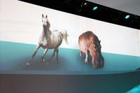 「『CLSシューティングブレーク』のデザイン作業は、馬とカバを融合させるがごとく難易度の高い作業だった」とは、ダイムラーの弁。