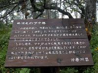頂上付近で見つけた看板。ブナが次々と枯死していること、その原因が大気汚染と考えられていることが書かれている。