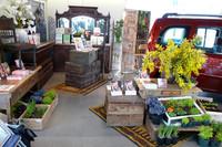 ルノーと蔦屋書店のコラボショップがオープンの画像