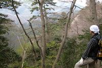"""第93回:""""奇跡の山""""、高尾山に迫る危機その5:圏央道と、涸れた滝(矢貫隆)"""